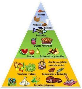 piramide alimentacion deporte
